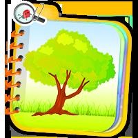 Gry o roślinach - ćwiczenia z przyrody - ZdobywcyW