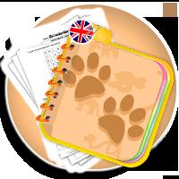 Zwierzęta po angielsku - nauka słownictwa dla dzieci - ANIMALS karty pracy - Karty pracy Angielski