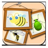 Nauka o owadach - Pożyteczne, czy szkodniki? - Zdo