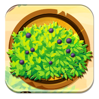 Rozpoznawanie roślin owocowych - Krzewy - Zdobywcy