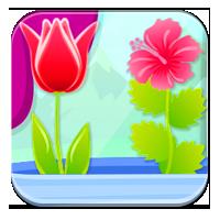 Jak rozpoznawać rośliny - Rodzaje roślin - Zdobywc