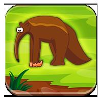 Zwierzęta w Ameryce Południowej - Zwierzęta Ameryk