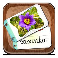 Kwiaty wiosenne - Wiosenne rośliny - ZdobywcyWiedz