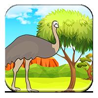 Zwierzęta w Australii - Zwierzęta Australii - Zdob