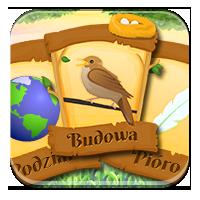 Quizy o ptakach - Rozpoznaję ptaki rodzime i egzot