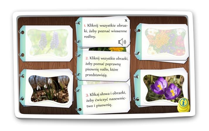Wiosenne rośliny quiz edukacyjny
